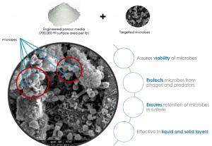 Drylet en brightwork werken samen aan bio booster
